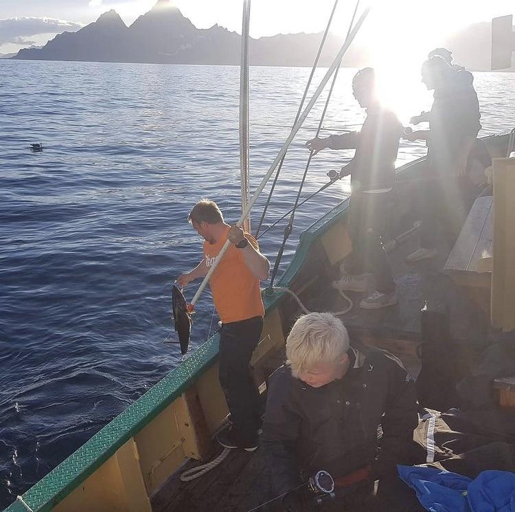 Skreifiske Lofoten